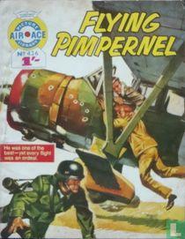 Flying Pimpernel