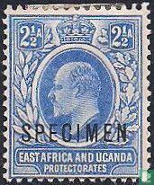 """Koning Edward VII opdruk """"SPECIMEN'"""