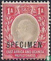"""Koning Edward VII opdruk """"SPECIMEN"""