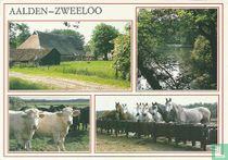 Aalden - Zweeloo