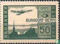 Flugzeug über Burgdorf