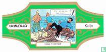 Tintin Coke in stock 6o