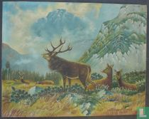 Deers in the glade
