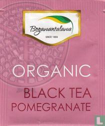 Black Tea Pomegranate