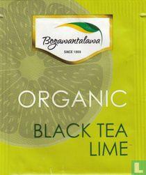 Black Tea Lime