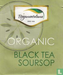 Black Tea Soursop