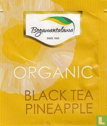 Black Tea Pineapple