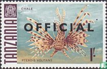Fish, with overprint