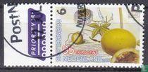 Grenzenlose Niederlande - Brasilien