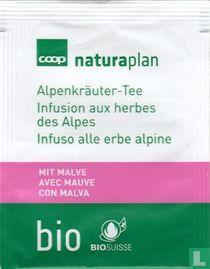 Alpenkräuter-Tee mit malve