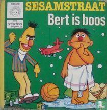 Bert is boos