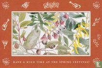 00100 - Royal Botanic Gardens Sydney - Spring Festival 1993