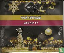 Accam 17