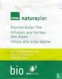 Alpenkräuter-Tee mit zitronenmelisse