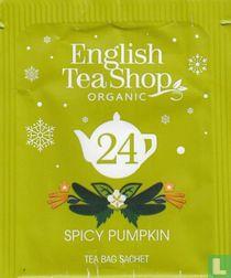 24 Spicy Pumpkin