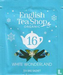 16 White Wonderland