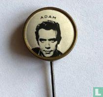 Adam (gladde rand)