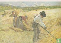 Harvesting The Rye