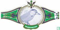 Birds 24