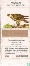 10. Halcon