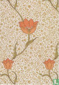 Garden Tulip, 1885