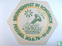 Brunnenfest in Sonsbeck