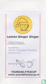 19 Lemon Ginger Zinger