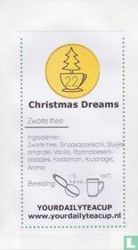 22 Christmas Dreams