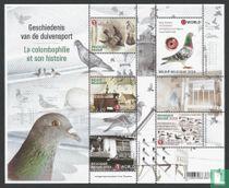 History of pigeon racing