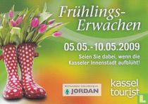 Frühlingserwachen Kassel