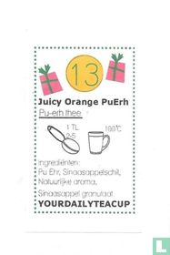 13 Juicy Orange PuErh