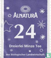 24 Dreierlei Minze Tee