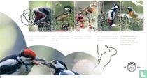 Beleef de Natuur - Bos $ Heidevogels - A