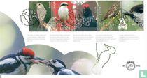 Beleef de Natuur - Bos $ Heidevogels - B