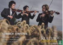 Kultursommer Nordhessen 2013 - Sommer Sinfonie