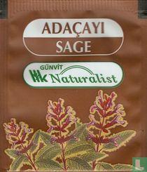 Adaçayi Sage