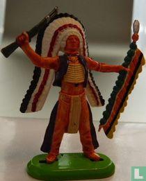 Indiaan met speer en geweer