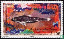 Lepidonotothen larseni
