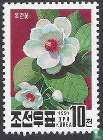 National Flower of Korea