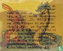 Nr 48