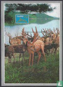 Postzegeltentoonstelling Taipei 1993