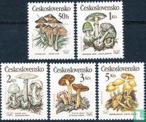 Giftige paddenstoelen