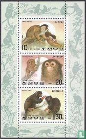 Jaar van de aap