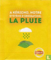 A Kéricho, Notre Système D'Irrigation: