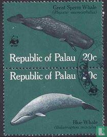 Walvissen (strook van 2)