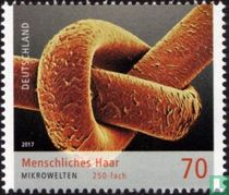Microscopische wereld kopen
