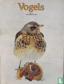 Vogels 19 januari/februari