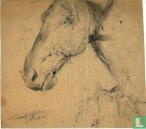 Sketch Head Horses