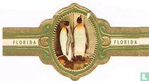 Keizer Pinguin