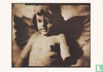 Paul Elledge 'Terra Cotta Angel'